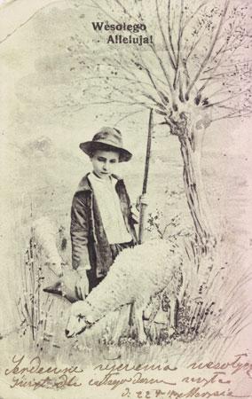 pastuszek z owcami